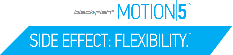 bf5motion-banner-cropped